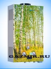 Купить Газовая колонка VEKTOR LUX ECO 20-2 (березы) в Кунашак