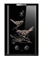 Купить Колонка газовая ACE WR-10B Black Birds INSE в Челябинск