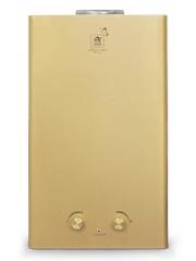 Купить Колонка газовая ACE WR-12B Gold INSE в Челябинск